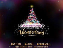 Xmas Tree Wonderland